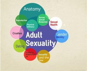 AdultHumanSexuality